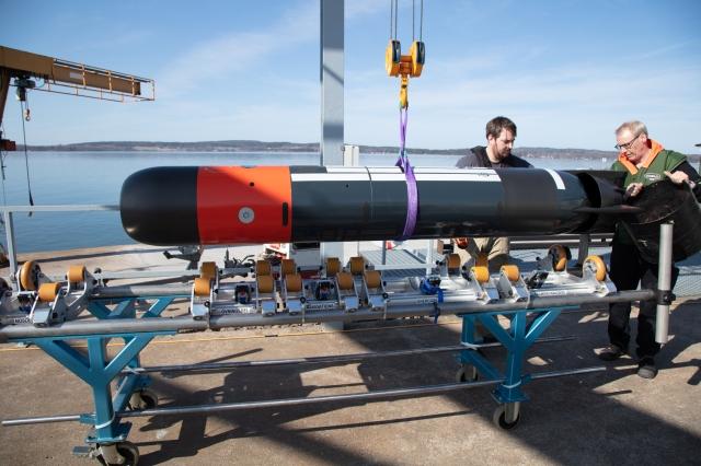 Lightweight torpedo - image 3